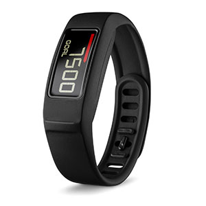 Vivofit 2 Garmin Fitness Watch